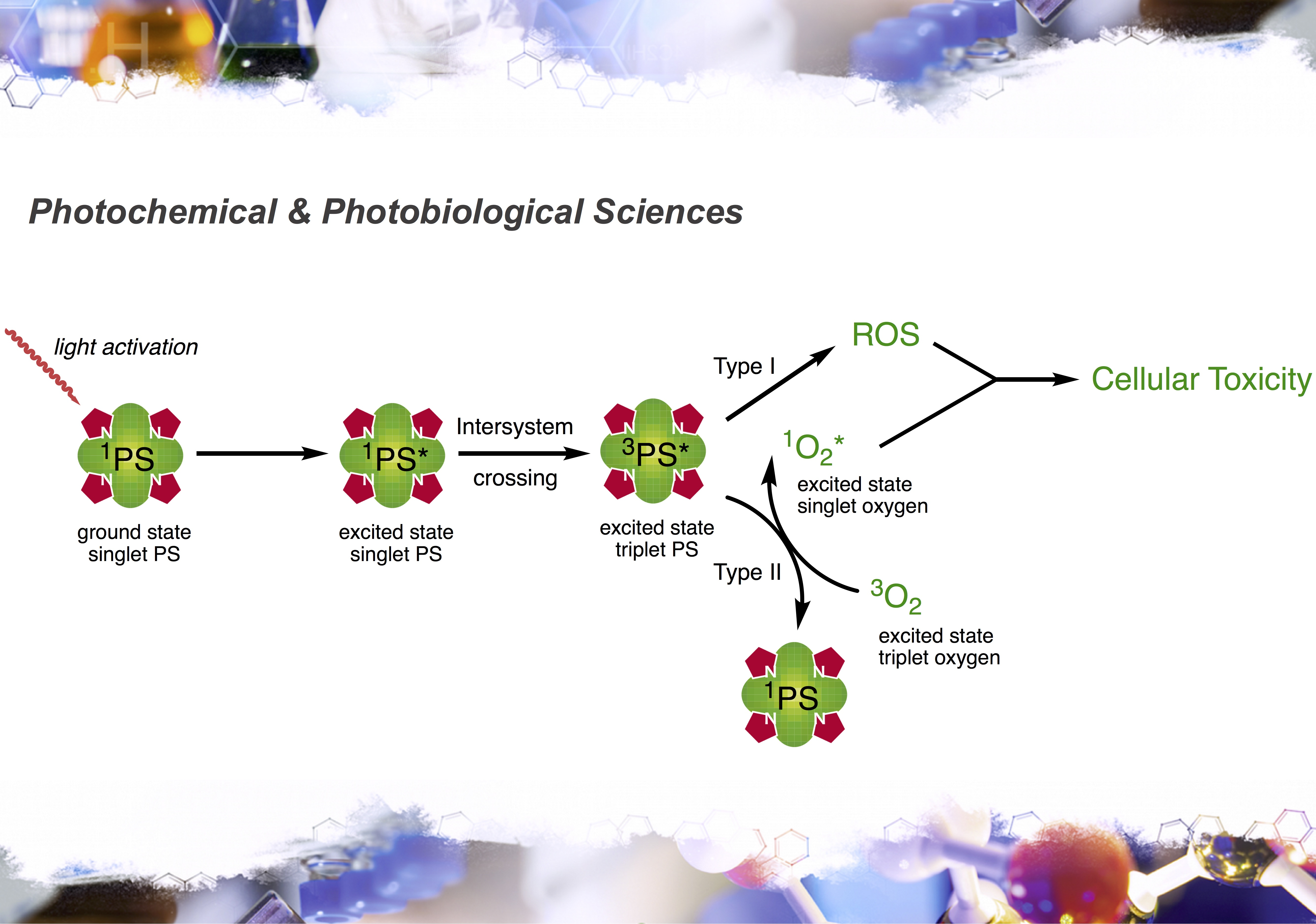 Check out our new perspective in Photochem. Photobiol. Sci.